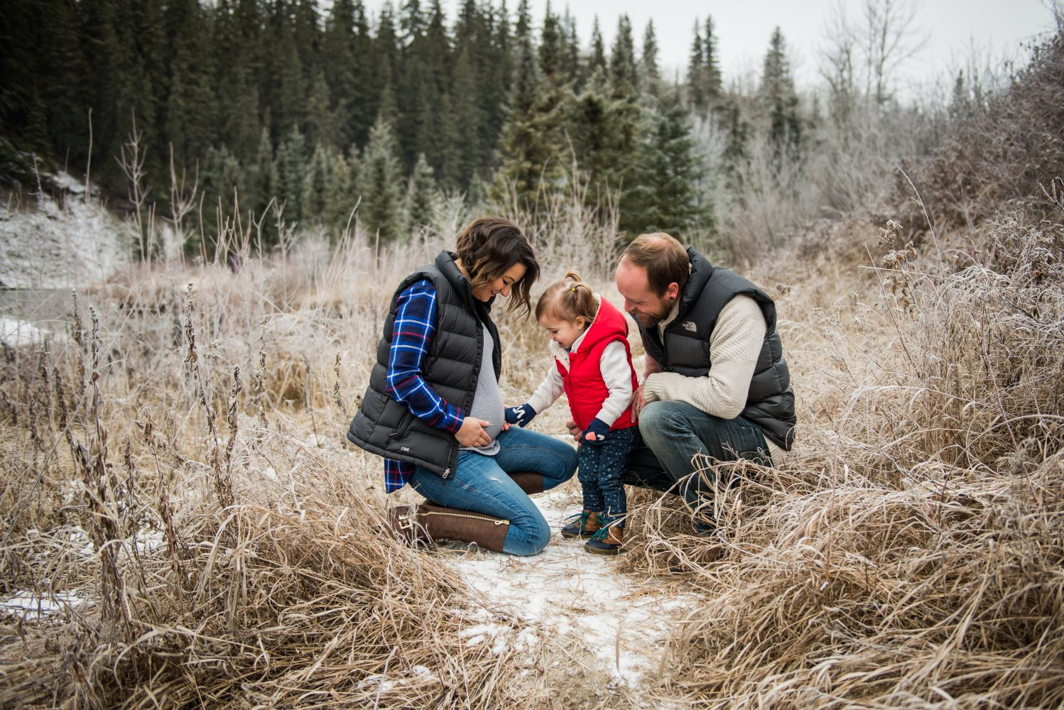Whitemud park Edmonton Winter family session with a Pregnancy announcement