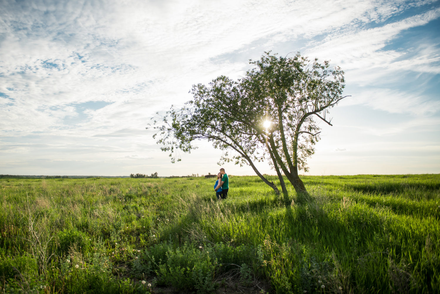 Beautiful maternity session in the summer with blue skies and a dramatic tree